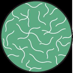 Amorphous Polymer