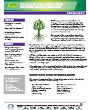 Cellulose Fiber PP
